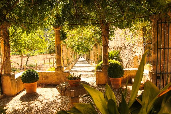 Klimawandel Mallorca: heißer Sommer, warmer Frühling